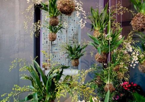 jardines-kokedama-L-b72vX9